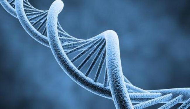 Seminario ThetaHealing ADN Avanzado